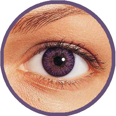 amethyst - Freshlook Colors Violet